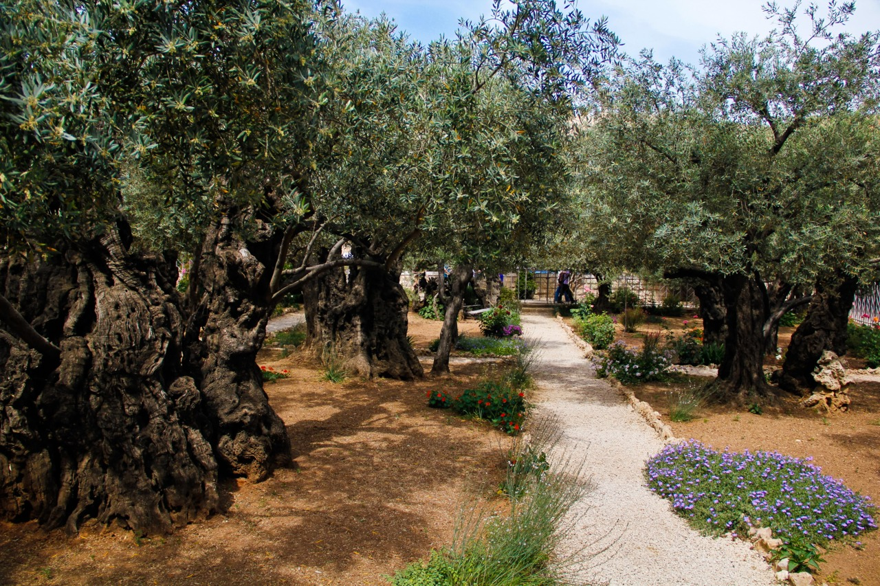 the garden of gethsemane it 39 s a beautiful gospel
